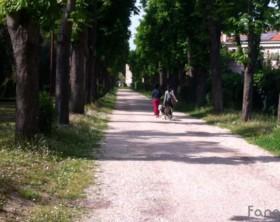 Il parco cittadino dei Passeggi, in via Roma a Fano