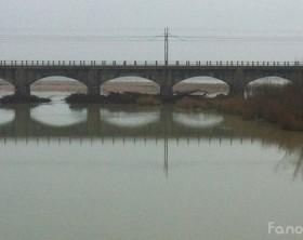 La foce del fiume Metauro ostruita da alberi e terra a Fano
