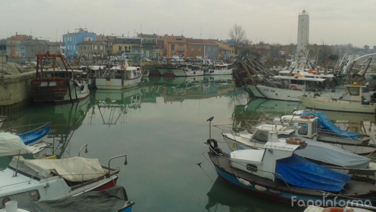 Vongolare attraccate al porto di Fano