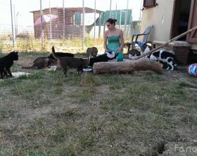 Cecilia Tornimbeni, vice presidente Melampo, associazione che gestisce il gattile comunale di Fano