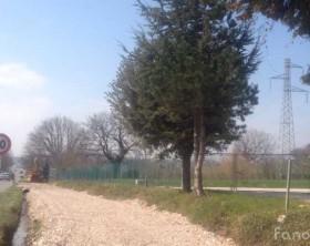 La pista ciclabile Fano-Fenile in costruzione