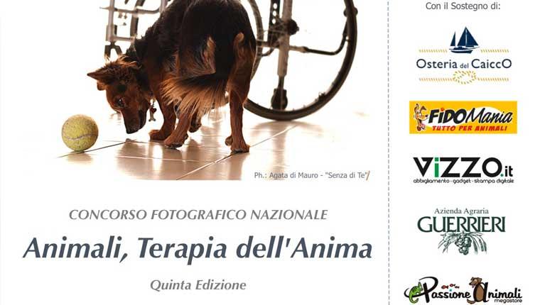 """""""Animali, terapia dell'anima"""", aperto il foto-concorso a Fano"""