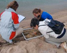 monitoraggio dello stato dell'ambiente costiero