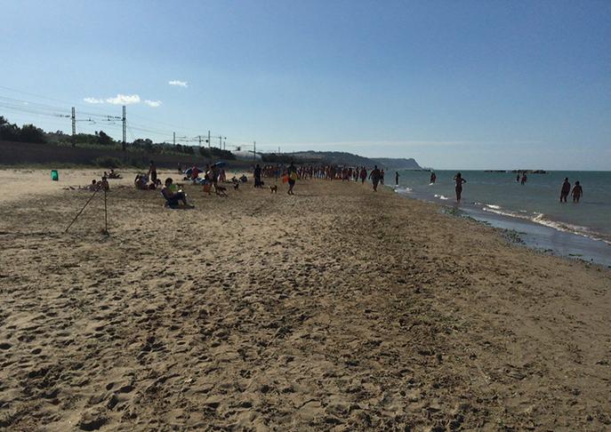 Spiaggia dell'Arzilla