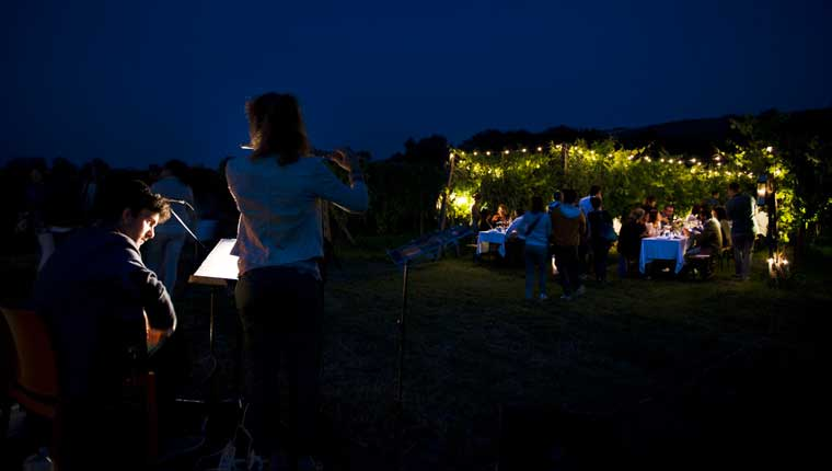 La cena in vigna proposta da Terracruda, azienda vitivinicola di Fratte Rosa
