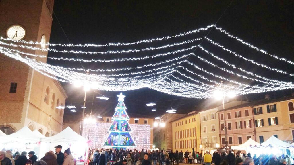 Albero piazza