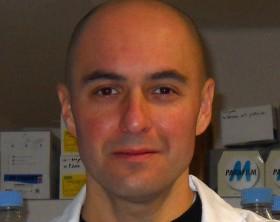Stefano Amatori