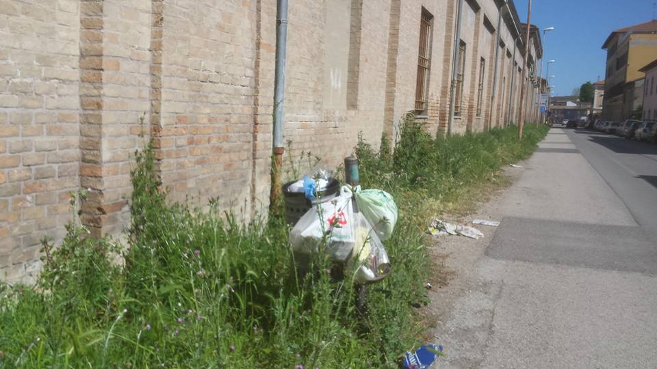 verde pubblico in via Palazzi